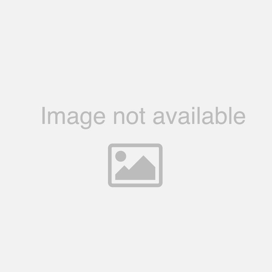 Samsill .5-inch Black Insertable Binder